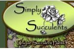 Simply Succulents Coupon Codes December 2019